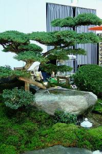 Der kleine japangarten for Little garden imports