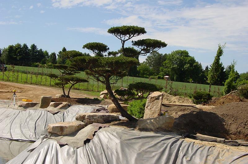 Ansicht der beiden garten bonsai auf der ostseite des teiches von