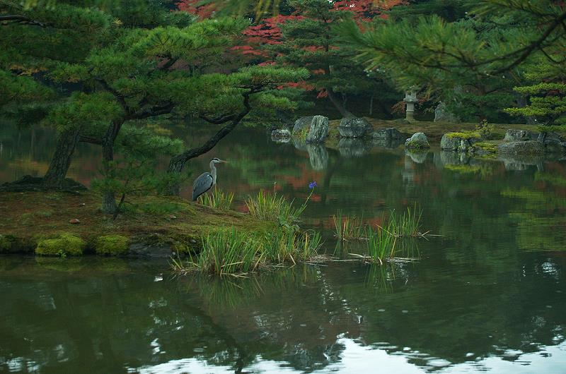 Zeng rten japanische g rten japangarten japan garten for Japanische garten bilder
